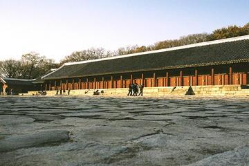 昌徳宮その他の歴史遺産を巡るソウル午前半日ツア…