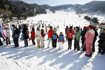 Full-Day Ski Package at Elysian...