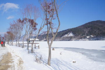 Snow and Nature Day Trip to Elysian Gangchon Ski Resort and Nami...