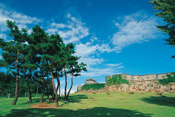 Suwon Hwaseong Fortress Half-Day...