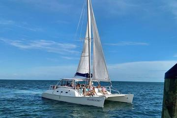 Day Trip Catamaran Snorkel and Dolphin Watch Tour near Panama City Beach, Florida