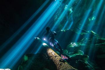 Diving Tour in Dos Ojos and Bat Cenote
