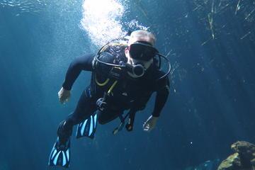 PADI Open Water Referral Dive Course in Playa Del Carmen