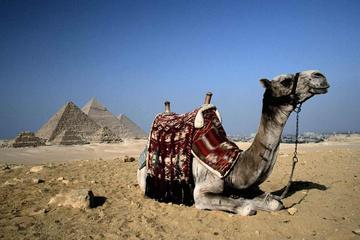 Kairo - Tagestour mit dem Flugzeug von Scharm El-Scheich