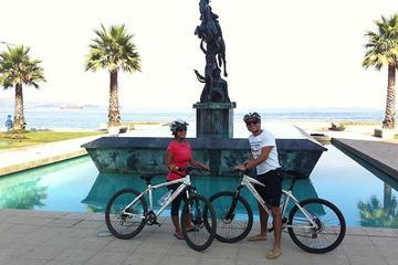 Excursão de bicicleta de dia inteiro para Concon, Viña del Mar e...