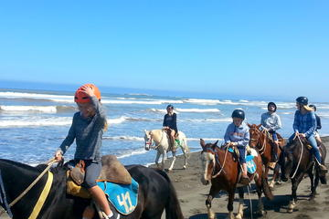 Viña del Mar and Valparaiso Private Tour Including Horseriding