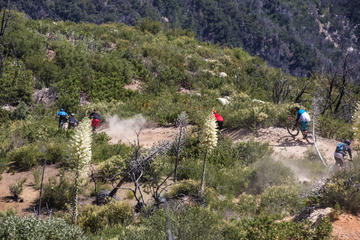 Book Mt Wilson Mountain Bike Enduro Day on Viator