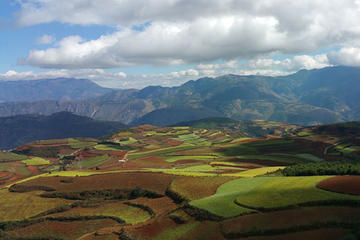 2 Days Dongchuan Red Land Private Trip