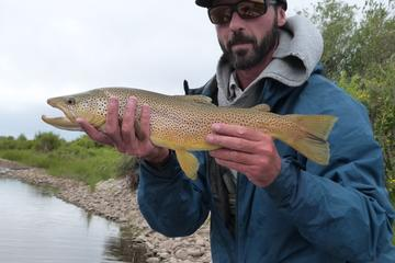 Yellowstone Full Day Wade Fishing Trip