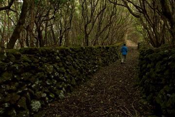 Caminhada nas Ilhas de Açores