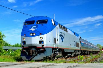 Book 2-Day Buffalo Day Trip from New York City by Train on Viator