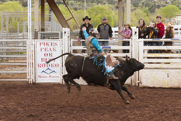 Colorado Springs Rodeo