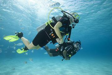 Discover Scuba Diving mit 2...
