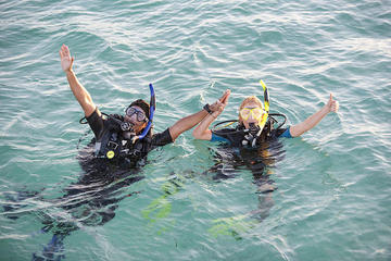 Dives Packages with Transfers in...
