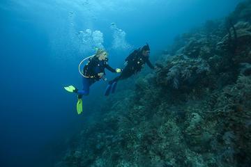 SSI Rescue Diver Course in Tenerife
