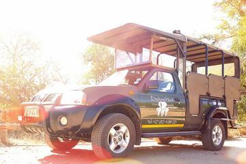 Safari van één volle dag door Kruger ...
