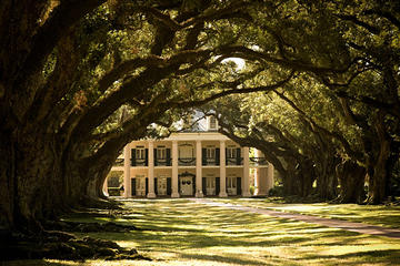 Combo Oak Alley Plantation And 16-passenger Air-boat Swamp Tour