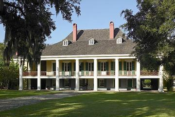 Destrehan Plantation and 16 passenger Airboat Tour Combo