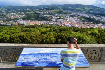 Half day tour Terceira Island - Azores