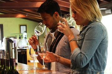 Small-Group Wine-Tasting Tour in...