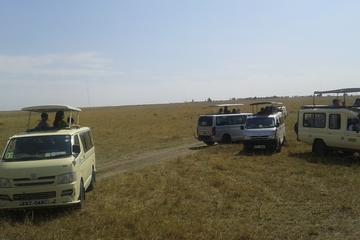 12-Day Tour: Maasai Mara, Serengeti, and Zanzibar from Nairobi