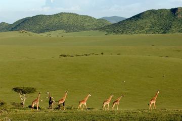 3-Day Maasai Mara Safari from Mombasa