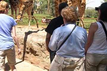 Day Tour from Nairobi: David Sheldrick Elephant Orphanage and Giraffe...