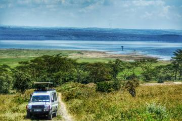 Tour of Lake Nakuru National Park...