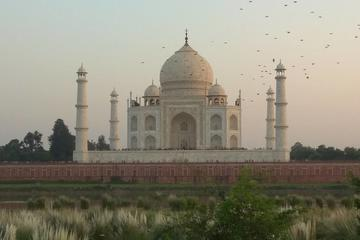 Dialogue With a Historian on Mughal Architecture over the tea