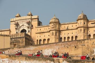 Private Customized Tour:-  Jaipur in One Day