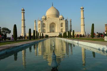 Taj Mahal y Fuerte de Agra: recorrido guiado de un día desde Nueva...