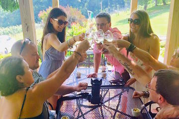 Book Virginia Blue Ridge Winery Tour on Viator