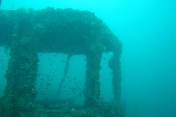 Sortie plongée sur l'épave du MS King Cruiser de Phuket