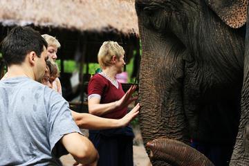 2-tägiger Ausflug mit Elefanten ab Chiang Mai