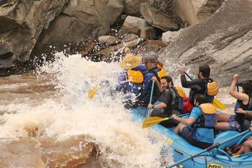 Day Trip Economy Durango River Rafting Trip near Durango, Colorado