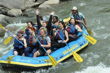 Day Trip Family Friendly Animas River Raft Trip near Durango, Colorado