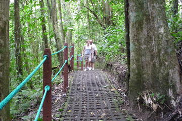 Hanging Bridges and La Fortuna Waterfall Nature