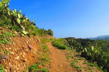 Book Half-Day Mountain Bike Tour Near Orange County on Viator
