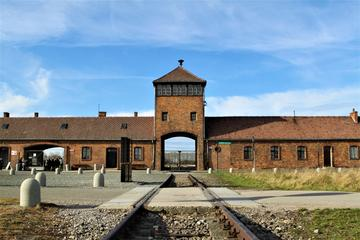 Auschwitz-Birkenau Memorial and Museum: Private or Shared Tour