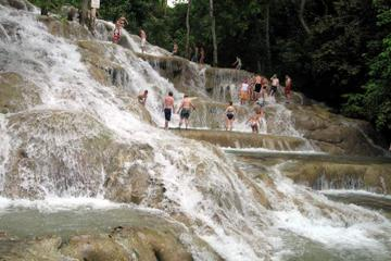 Private Tour to Dunn's River Falls in...