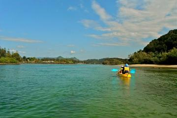 Brunswick River Nature Sunrise Kayak Tour from Byron Bay