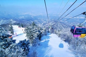 Yongpyong Gondola Day Trip from Seoul Including Outlet Shopping Option