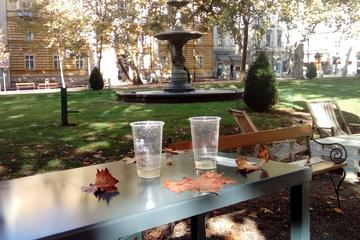 Private 1.5-Hour Guided Walking Tour of Zagreb