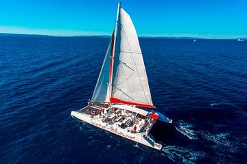 Excursion d'une journée complète sur un gigantesque catamaran à Hvar...