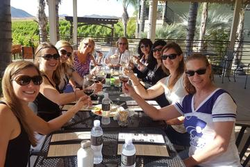 Guided Temecula Wine Tour from San...