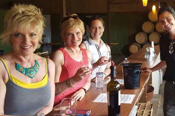 Day Trip Guided Wine Tasting Tour of Temecula near Temecula, California