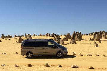 Pinnacles and Yanchep Day Trip from Perth Including Fish and Chip Lunch