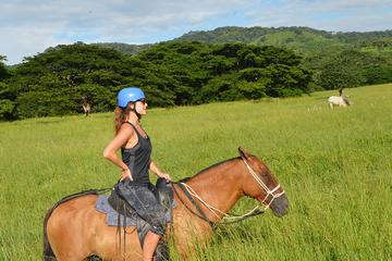 2-Hour Horseback Riding Tour in Guanacaste