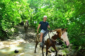 ATV - Horseback Ride Adventures