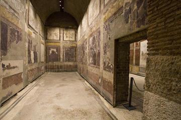 Snabbinträde: Casa di Augusto, Casa di Livia och Colosseum-rundtur i ...